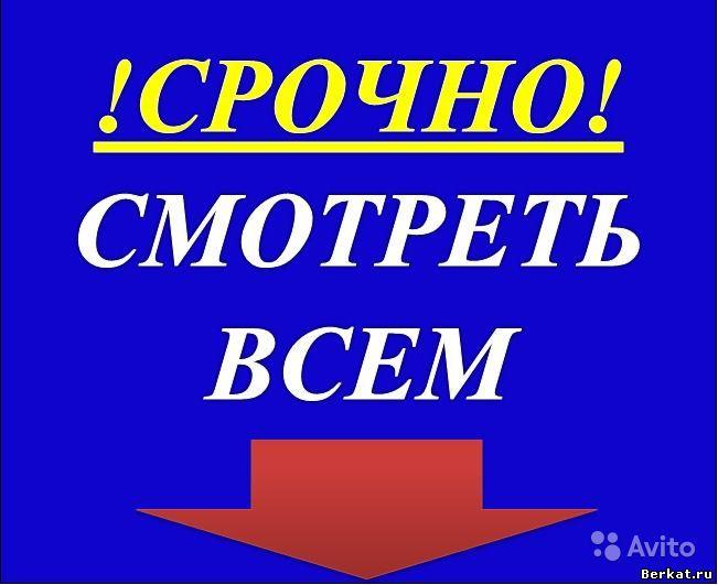 4IhmmQwdbv.jpg